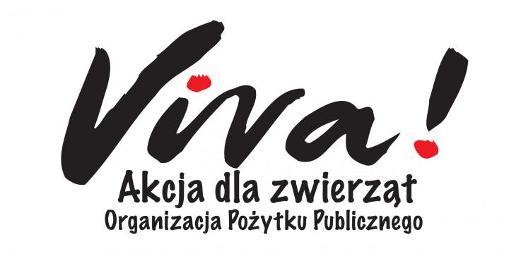 Spotkanie z Fundacją Viva!