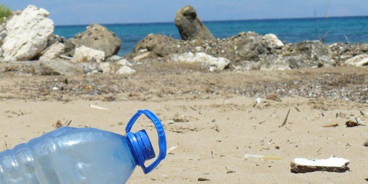 Śmieci nie biorą się znikąd. Warsztaty ekologiczne