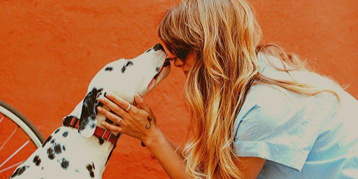 Światowy Miesiąc Dobroci dla Zwierząt w BPP